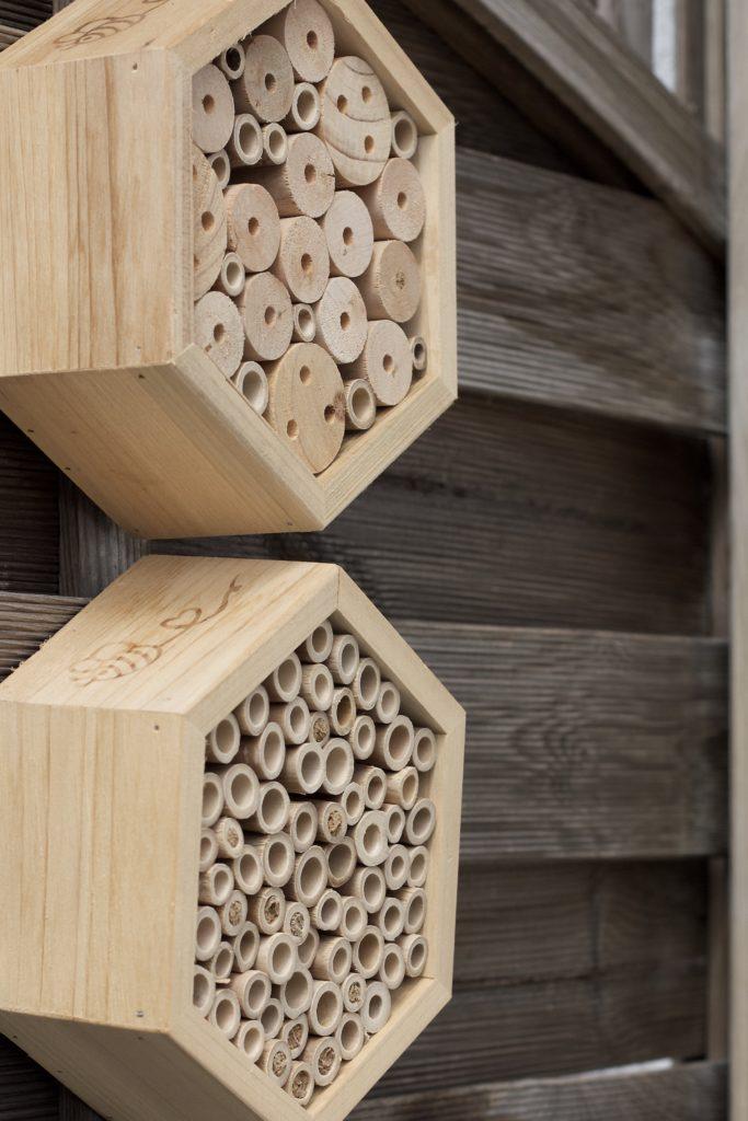Bienenhotel für Anfänger